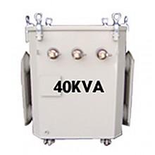 유입식 정격용량 40KVA (단권형)